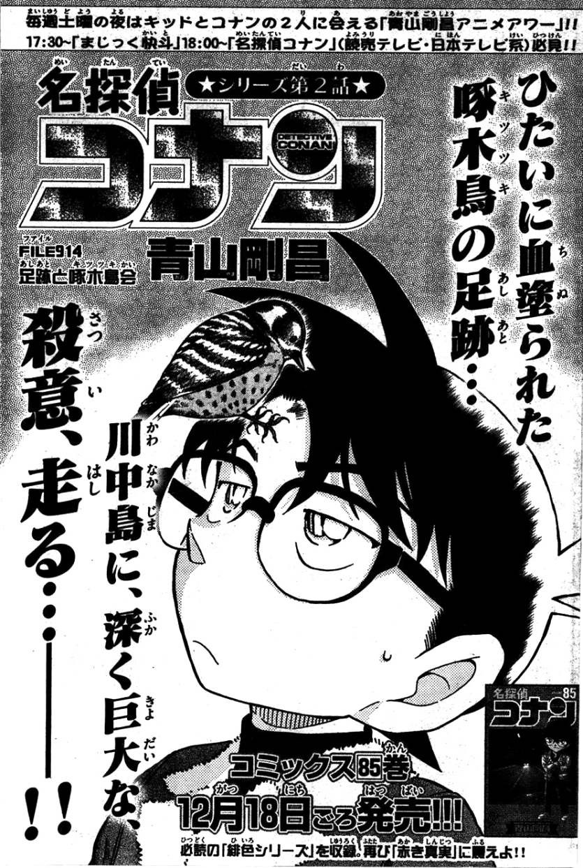 Detective Conan - Chapter 914 - Page 1